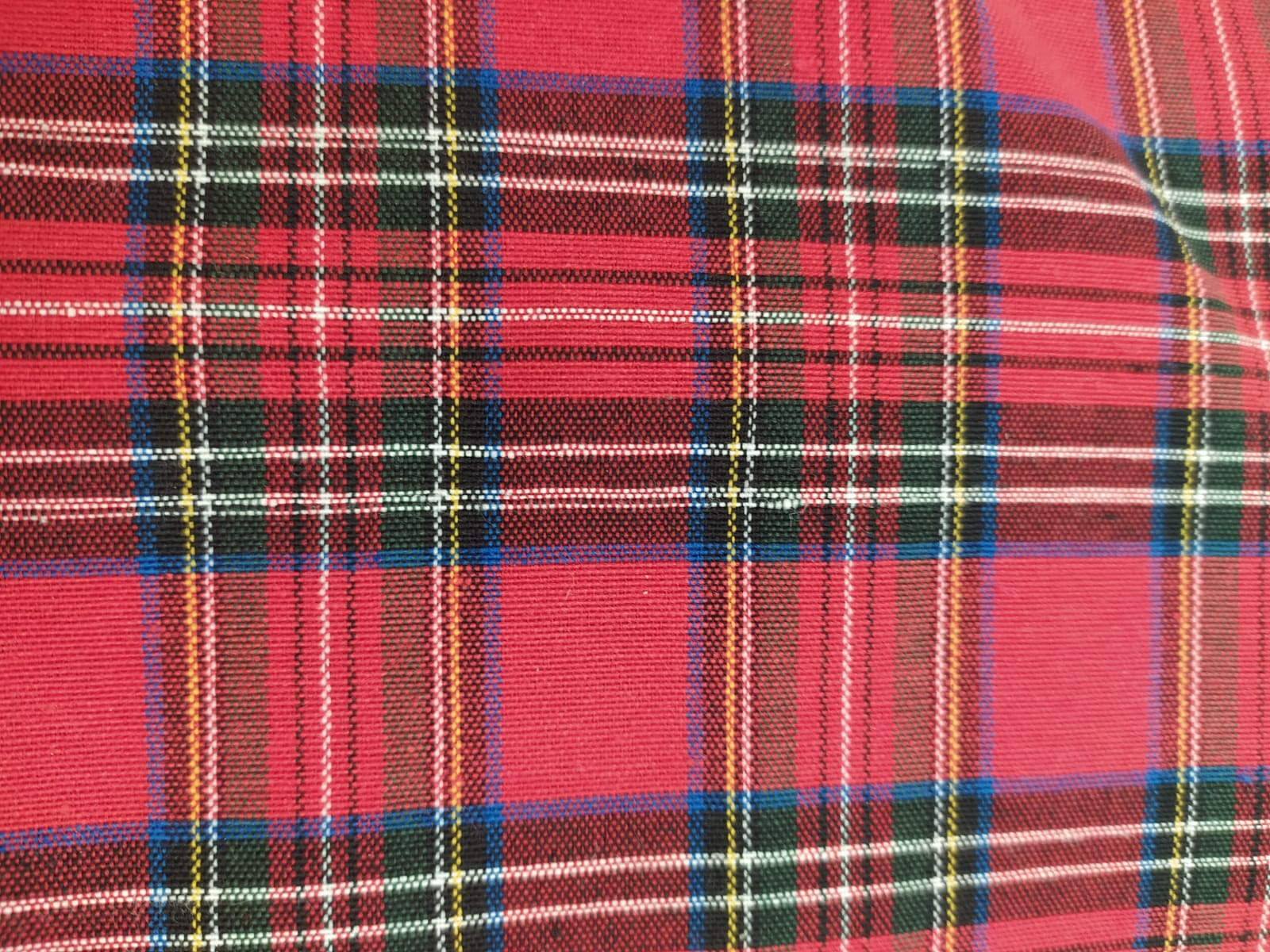escocés rojo